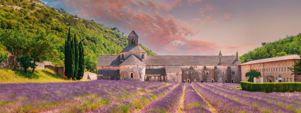 lavender fields private tours from nice